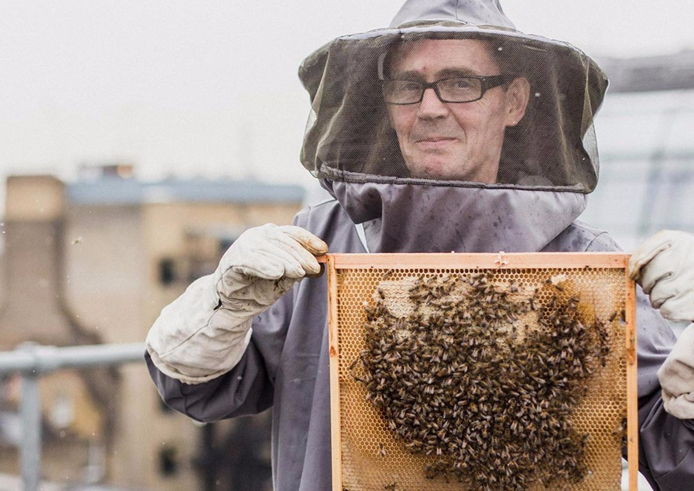 man in bee keeping protective suit, holding up a honeycomb with bees on it