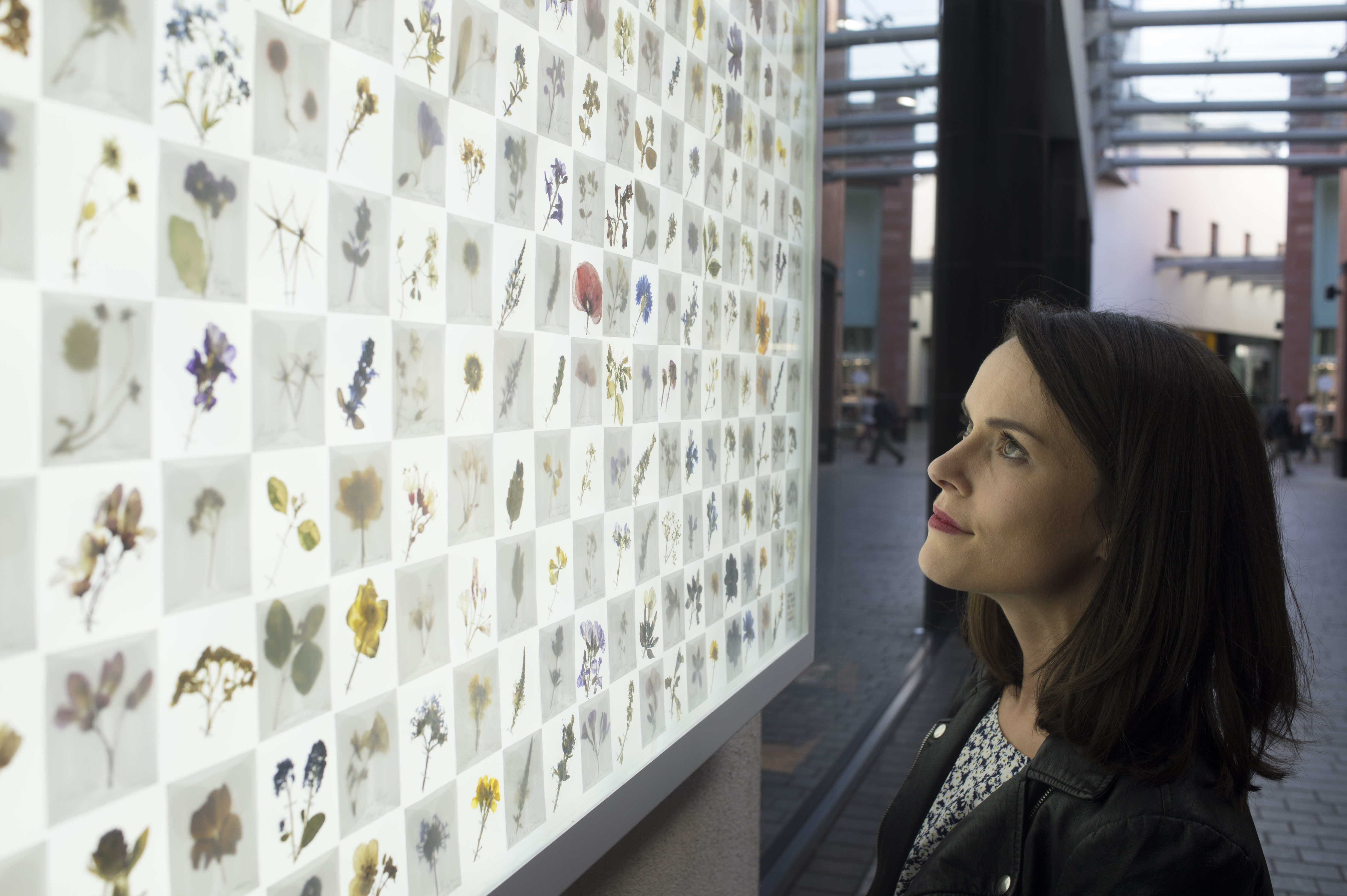 woman looking at a big display of wildlife found in the area surrounding the shopping centre